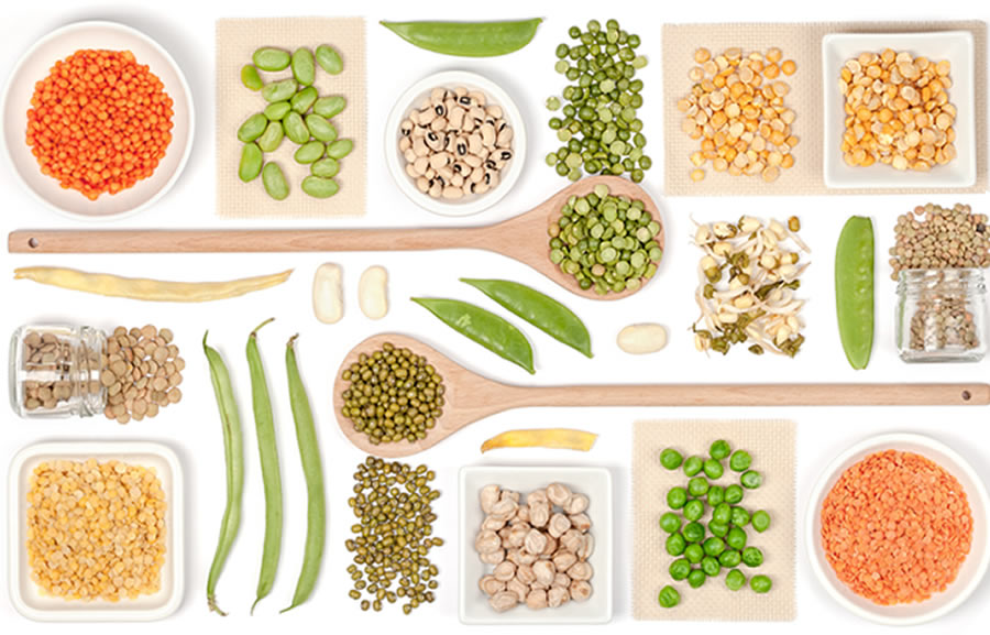 Nutrition Based Therapy - seeds, nuts, legumes